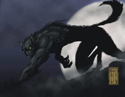 Draughlin First Warewolf